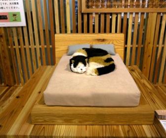 【猫ブーム】「ネコ家具」爆売れ、家族だから 職人芸で精巧リサイズ