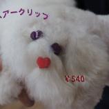 『春はワンちゃんもオシャレに♪愛犬用ヘアーアクセサリー』の画像