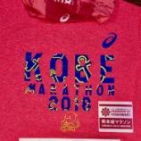 『人生はマラソンだ!フル6本目〜熊本城マラソンのステッカーを胸に、やっぱり神戸は最高!@神戸マラソン2018』の画像