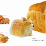 ワンコと食べ物が合体?「たべものに育てられた犬」がフィギュアになってガチャに登場!