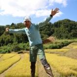 『稲刈りファッションショー、セヤコレ2019秋の入賞者発表』の画像