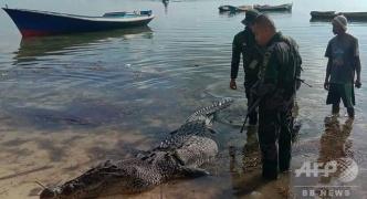 体長約5メートルのワニが漁師をボートから引きずり下ろし殺害 顎に遺体を発見: ダイナマイトで殺処分 【フィリピン】