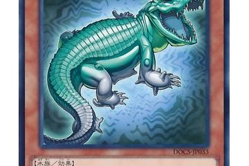 【遊戯王デッキ】スキドレグレイドルハンド (グレイドルスライムなし)