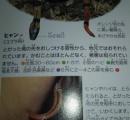 毒ヘビの毒の強さがヤマカガシ>マムシ>ハブという事実