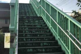 天野が原に「マムシ注意」の看板がある!〜岩船小学校方面へ行く時に便利な歩道橋のところ〜