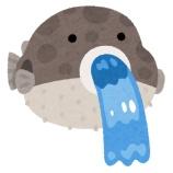 『今フグの卵巣食べとるんやけど』の画像