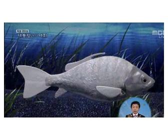 李明博「水質監視の魚ロボットデカすぎ。小さくして編隊遊泳しる!」→「ムリニダ…」