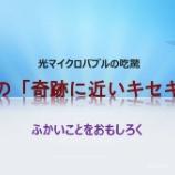 『九州高気圧環境医学会における特別講演を終えて(2)』の画像