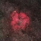 『シグマ150mmF2.8によるケフェウス座のIC1396 散光星雲』の画像