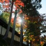 『やっぱりすごいな東福寺』の画像