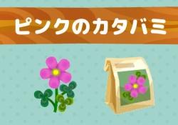 【ポケ森】ピンクのカタバミの種ってどうやって集めてる?→簡単に集める方法はコチラ【レイジと春のはなばたけ】