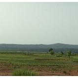 『赤土から緑あふれる大地へ。(ブルキナファソ)』の画像