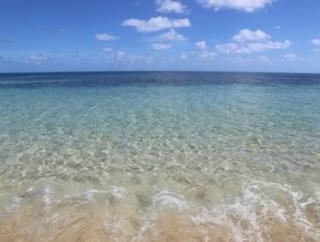 【画像】『ハワイのビーチがウミガメでいっぱい!』←これ実は……