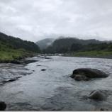 『小鮎と遊ぶ35 (2019/6/15 安曇川・長尾 ん~あかん、ちょっと冷えた)』の画像