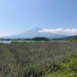 『河口湖から見える富士山に感動したので、富士河口湖町に一家で移住します、民宿をはじめる予定なので皆様遊びに来て下さい #ネトウヨ安寧』の画像
