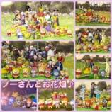 『プーさんとお花畑♪』の画像