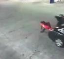 車のトランクに拉致された女性が自力でロック解除し走行中にダイナミック脱出! そのまま助けを求める