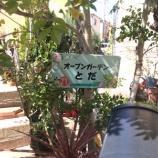 『戸田市を花と緑で美しく オープンガーデンとだをご存知ですか?』の画像