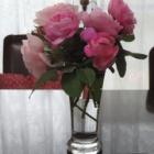 『【ピノ子日記】台風一過庭の様子と部屋の隅の簡単カビ落とし 』の画像