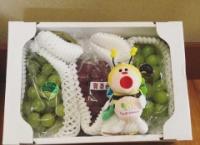 【朗報】チーム8 中野郁海さんに二十世紀梨のお返しが届く