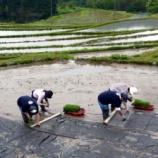 『お手伝いいただけますでしょうか、田植え体験会2011』の画像
