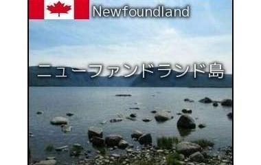 『ニューファンドランド島』の画像