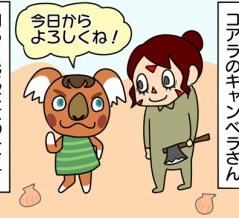 【あつ森】不器用なキャンベラ【ゲーム】