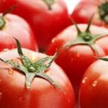 『うまいトマト料理を教えてくれ』の画像