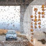『フォト短歌「雀すずめスズメ」』の画像