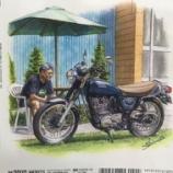 『雑誌「SRonly」の裏表紙イラストを描かせて貰いました。』の画像