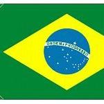 ブラジル「ジカ熱感染リスクは低いのでぜひリオへお越しください」