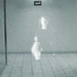 『【第2夜】フリータと先生の怪談「心霊写真」』の画像