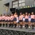 第70回東京大学駒場祭2019 その116(STEP)