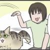 駆け抜ける猫