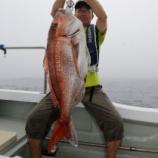 『7月21日 釣果 テンヤ・スロジギ・スーパーライト マダイMAX80 6.5キロ』の画像