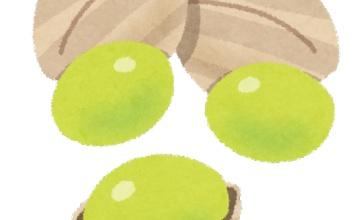【悲報】ギンナンを食べすぎると食中毒になるぞ!!注意しろ!!