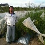 『【農商工連携S】無農薬は当たり前!まめな農園・木村さん』の画像