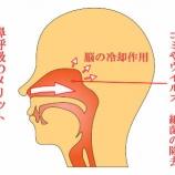 『口呼吸について【篠崎 ふかさわ歯科クリニック】』の画像