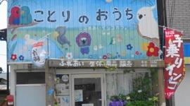 【神奈川】鳥カフェのオカメインコが客に連れ去られ虐待される