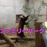 『普段直接見れない動物を見に「ファミリーパーク」へ行ってきました!』の画像