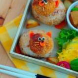 『ミニメンチの茶トラ猫ちゃんランチ』の画像
