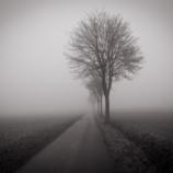 『怪文書 田舎がいかに怖い所か分かる画像』の画像