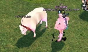 白い牛、でかくて真顔w
