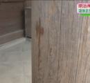 【いい加減にしろ】今度は東京の明治神宮に液体撒かれる