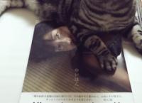 【悲報】横山由依の写真集、座布団扱いされる