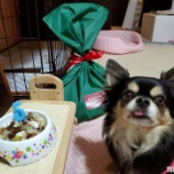 『🎊うちの子記念日にくらるカフェさんへ☆ 📝』の画像