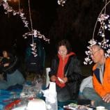 『2008年 4月30日 花見:弘前市・弘前公園本丸』の画像