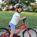 『PTAの課題解決へ!スキルを身につけるのは自転車の乗り方をマスターするのに似ている件』の画像