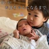 『妹ができた【出産新しい家族】』の画像