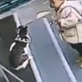 ネコが店の入り口にいた。邪魔だからどかしてくれる? → 犬はこうした…